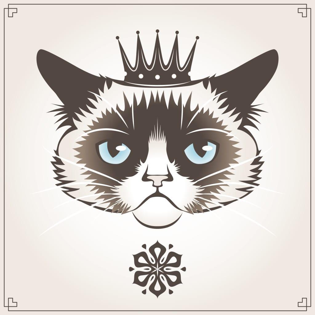 Gör din katt till kung – bygg ett eget slott till den!