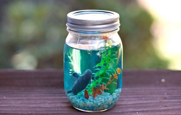 Pysseltips – gör ett miniakvarium i en glasburk, sjöko, val