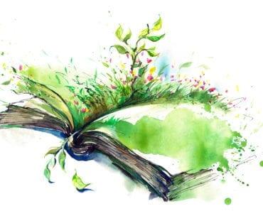 kreativt skrivande, skriva, hur skriver man, kreativitet, inspiration