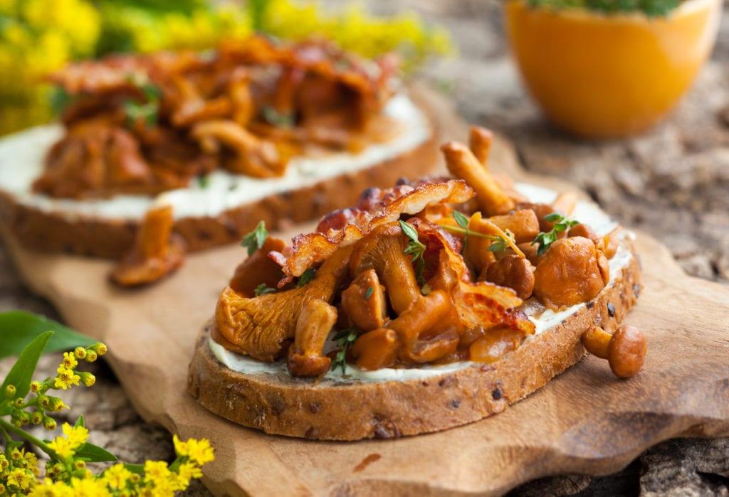 kantarelltoast, kantareller, toast, svampplockning, plocka svamp, mat, vegetarisk rätt, matlagning, recept, svamp, schalottenlök