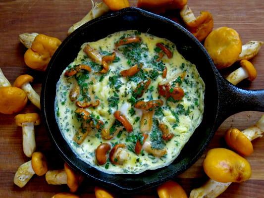 recept, kantarell, kantareller, kantarellomelett, omelett, svamp, svampomelett, svampplockning, mat, vegetarisk mat, maträtt, så gör man omelett