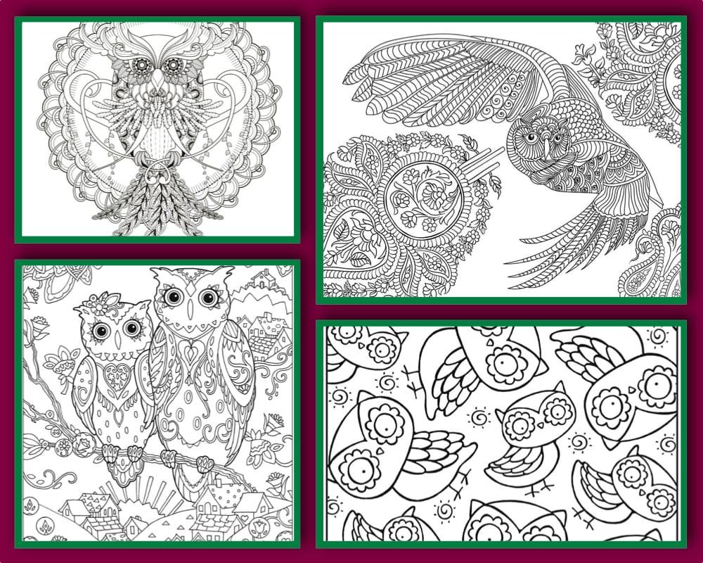målarbilder, målarbild, gratis målarbilder, gratis målarbild, målarbok, målarböcker, målarbok för vuxna, målarböcker för vuxna, zentangle, mandala, mindfulness, måla, färglägga, mindfullness, doodle, bättre hälsa, bra hälsa, uggla, uv, ugglor, ugglemotiv, bilder med ugglor