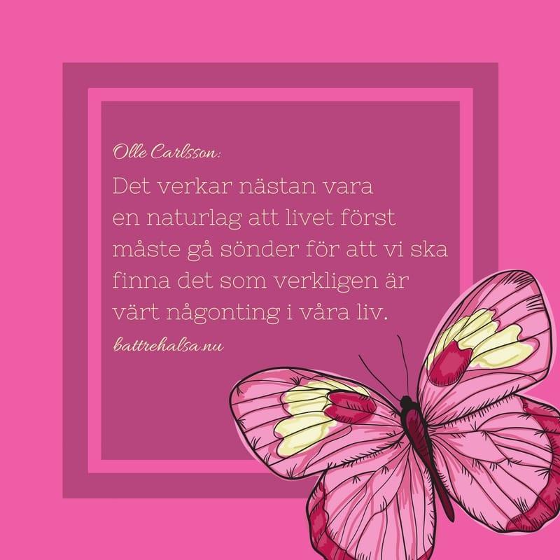 citat, tänkvärt, citat om livet, citat om att duga, Olle Carlsson