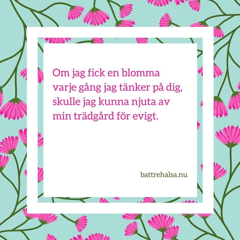 citat, ordspråk, tänkvärdheter, citat om kärlek, kärlekscitat