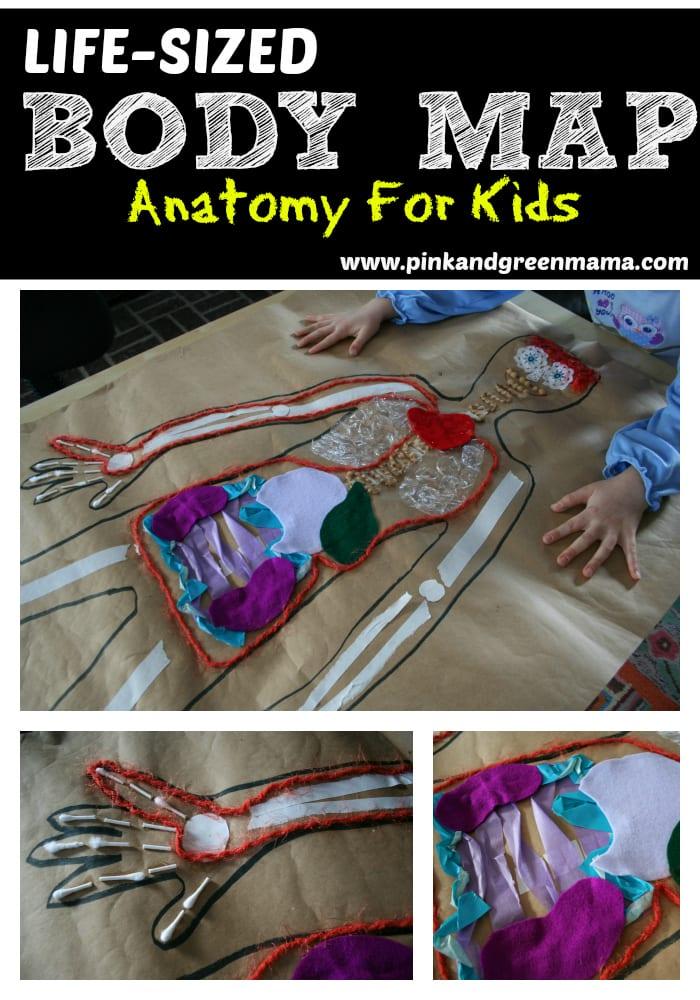 pyssel, pyssel för barn, barnpyssel, anatomi, människokroppen, experiment, anatomi, anatomisk karta i naturlig storlek