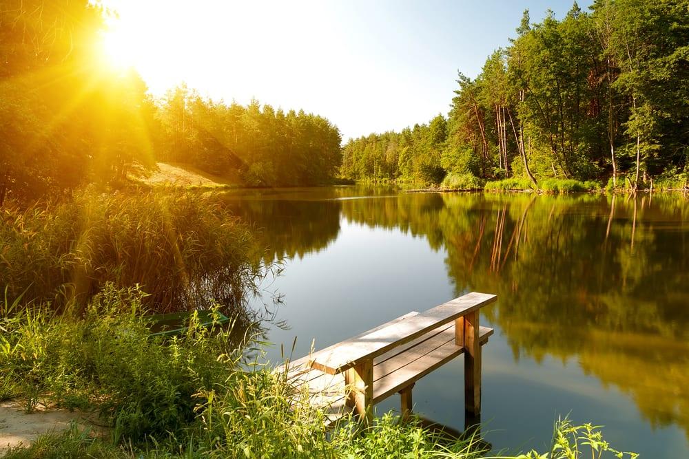 bättre hälsa, må bra, bra hälsa, hälsa, lycklig, vara lycklig, glädje, glad, psykologi, livsstil, natur, människa, välmående, välbefinnande, natur, naturområde, skog, skogar, skogsdungar, skogsbilder, naturliv, natur och hälsa, naturbilder, stress, oro, ångest, immunförsvar, fokus, koncentration , sjö, insjö, bada, bada i insjö