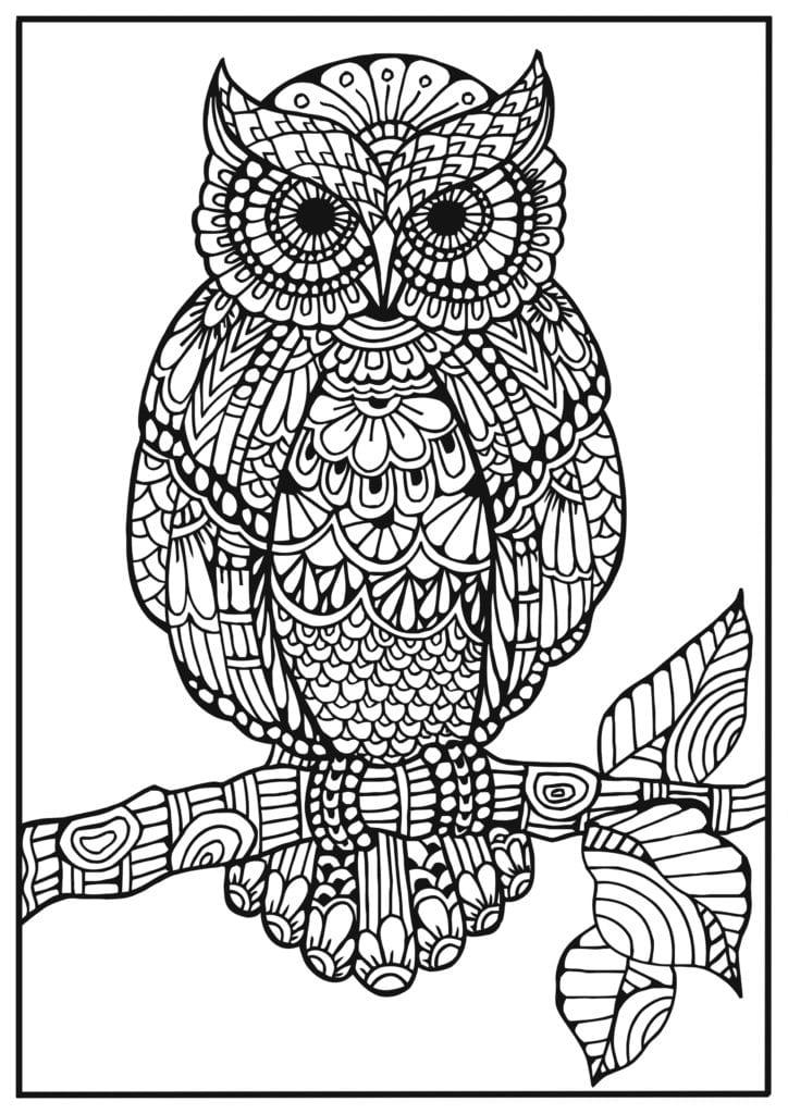 målarbilder, målarbild, gratis målarbilder, gratis målarbild, målarbok, målarböcker, målarbok för vuxna, målarböcker för vuxna, zentangle, mandala, mindfulness, måla, färglägga, mindfullness, doodle, bättre hälsa, bra hälsa, uggla, fågel, djur, fågelbilder, djurmotiv