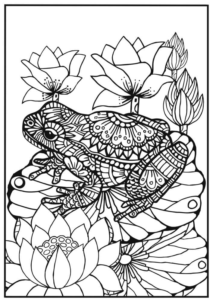 mandala målarbok vuxen