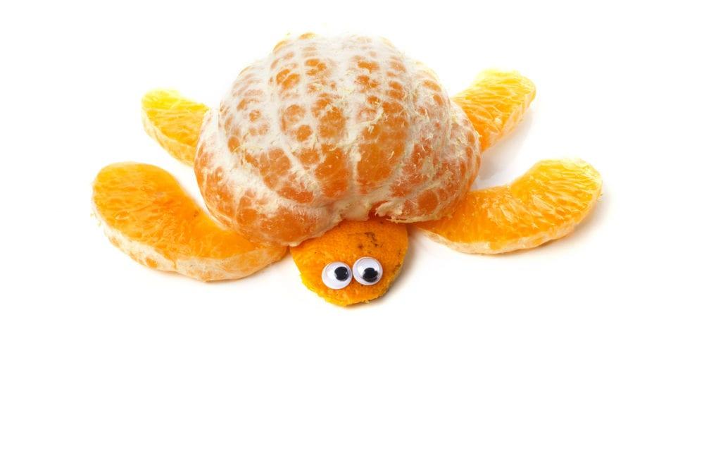 frukt, frukter, mat, fruktstund, göra mat rolig, kreativ mat, pyssel, pyssla, pysseltips, leka med mat, pyssla och lek, familj, barn, barnpyssel, pyssel för barn, familjepyssel, skola, fritids, förskola, göra sköldpadda av clementin, clementin, sköldpadda, citrus, citrusfrukt