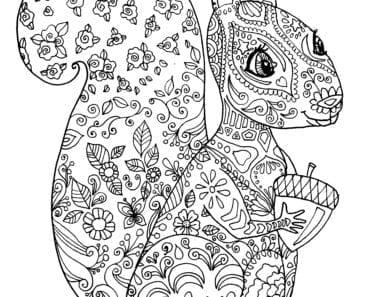 målarbilder, målarbild, gratis målarbilder, gratis målarbild, målarbok, målarböcker, målarbok för vuxna, målarböcker för vuxna, zentangle, mandala, mindfulness, måla, färglägga, mindfullness, doodle, bättre hälsa, bra hälsa, djur, natur, ekorre, gnagare, skogsdjur