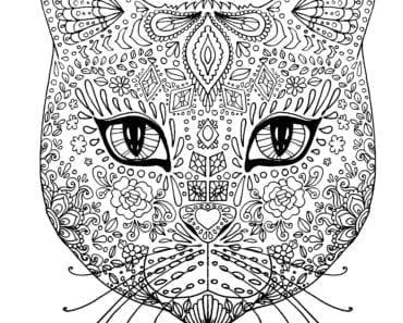 målarbilder, målarbild, gratis målarbilder, gratis målarbild, målarbok, målarböcker, målarbok för vuxna, målarböcker för vuxna, zentangle, mandala, mindfulness, måla, färglägga, mindfullness, doodle, bättre hälsa, bra hälsa, katt, djur, husdjur, kattansikte