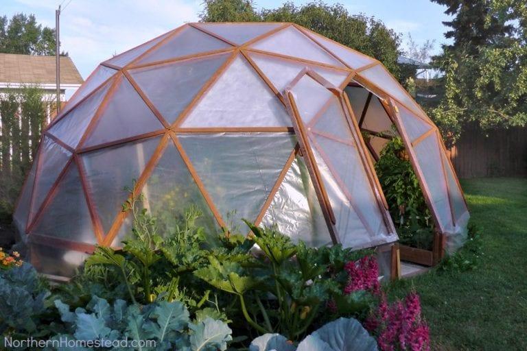 bygga växthus