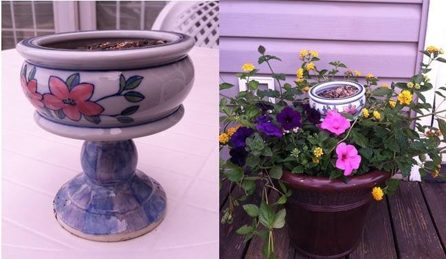 locka fjärilar till trädgården