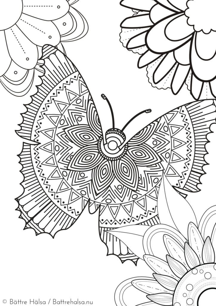 gratis målarbilder, fjäril målarbild