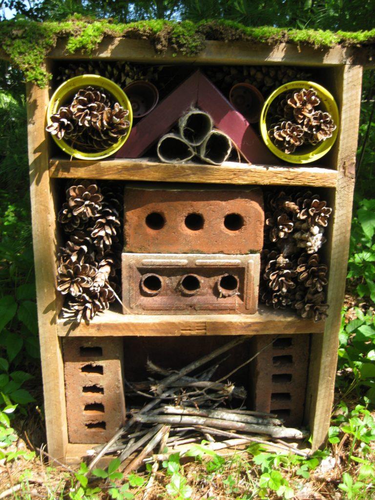 leka utomhus, utomhuslek, utomhuspedagogik, lära sig insekter, vara rädd om insekter