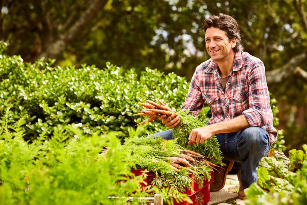 odla från frö, odla supermat