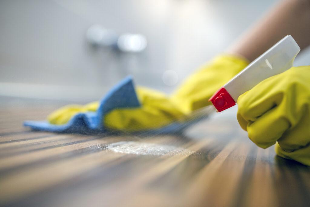 bakterier i hemmet, smuts hemma