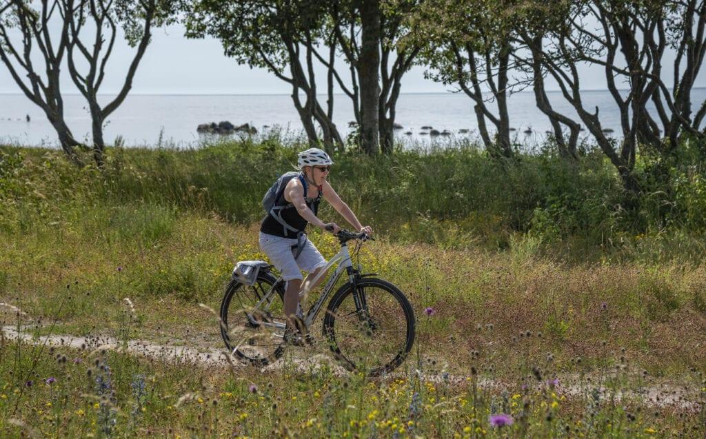 cykelleder i Sverige