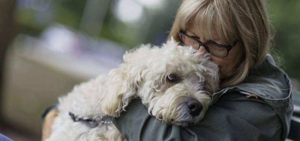 hälsoskäl att skaffa hund