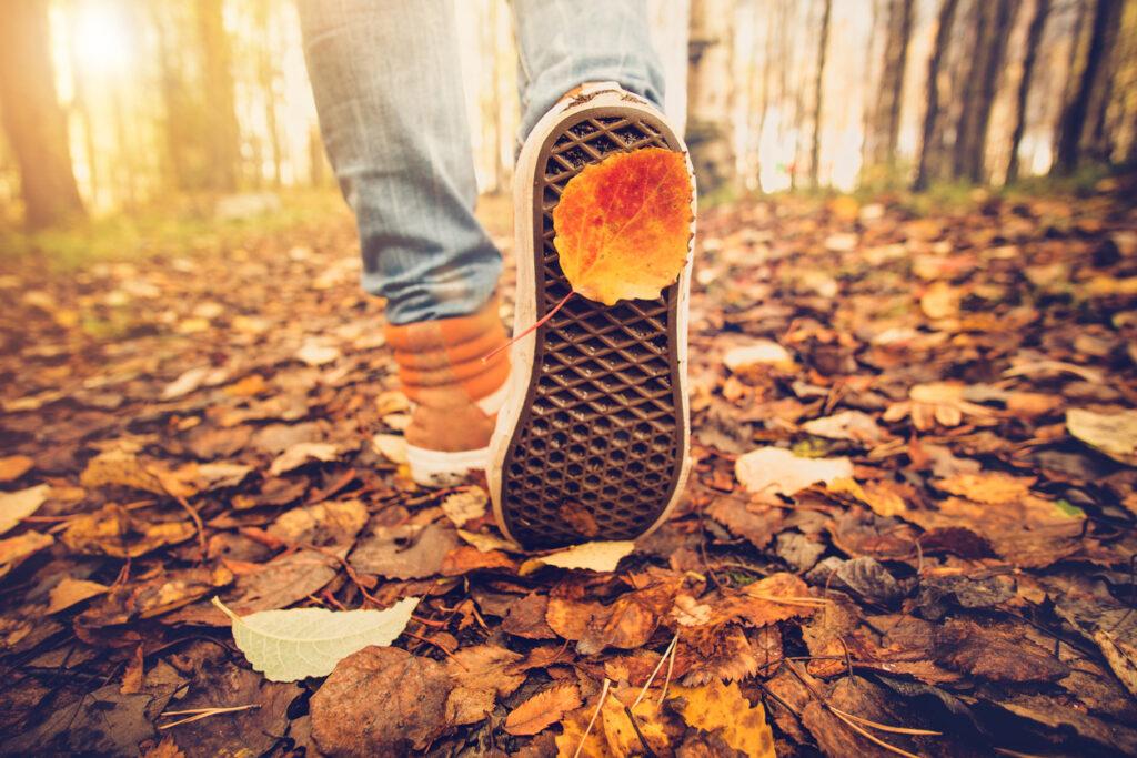 hur många steg ska man gå per dag