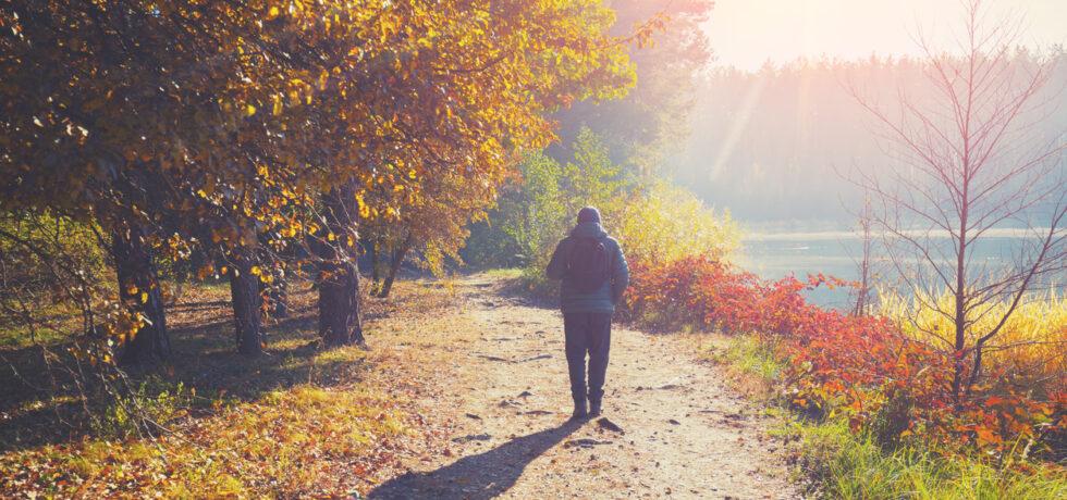 tips för att gå fler steg på en dag